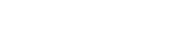 BlueSoft logo in white